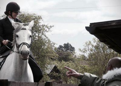 horse-training4